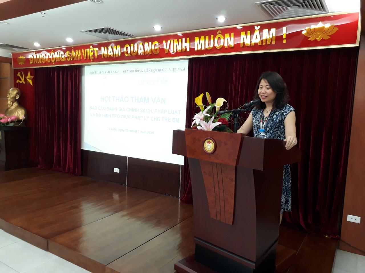 Hội thảo về Báo cáo đánh giá chính sách, pháp luật và mô hình trợ giúp pháp lý cho trẻ em - Ảnh 2